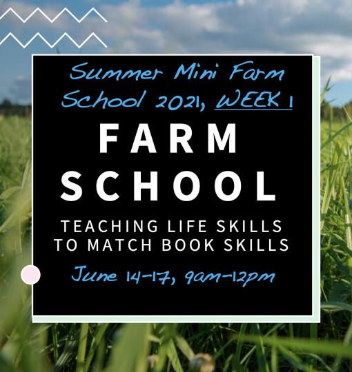 Summer Farm Camp Week 1