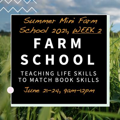 Summer Farm School Week 2
