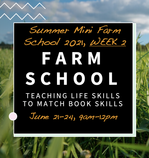 Summer Farm School Week 2